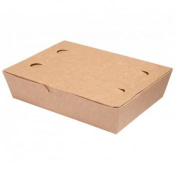 LUNCH BOX 20x14x5cm karton...