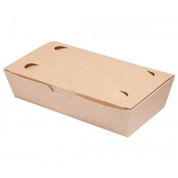 LUNCH BOX 20x10x5cm